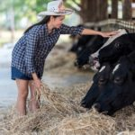 Thai, Farm