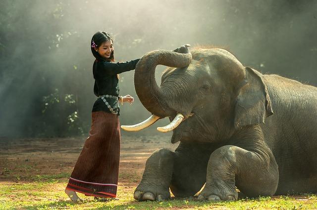 タイの象と、タイ人女性